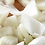 "Thumbnail: Diced Onions 3/8"" Frozen"