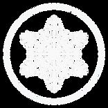white snowflake_.png