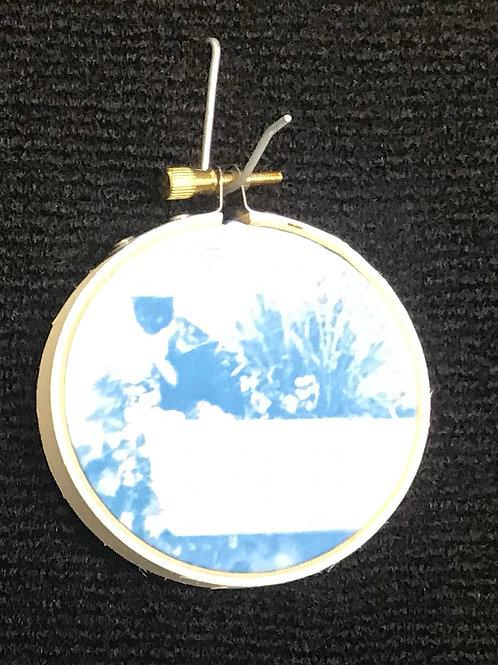 Cyanotype Small D