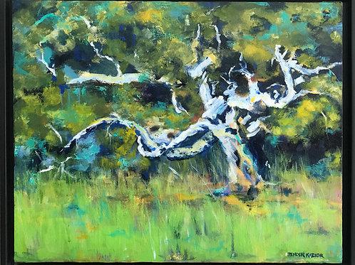 Tree / Oyster Landing 2