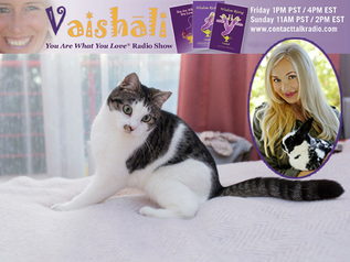 "Does Your Animal Sense the Paranormal?! Contact Dana & Find Out on ""You Are What You Love&q"