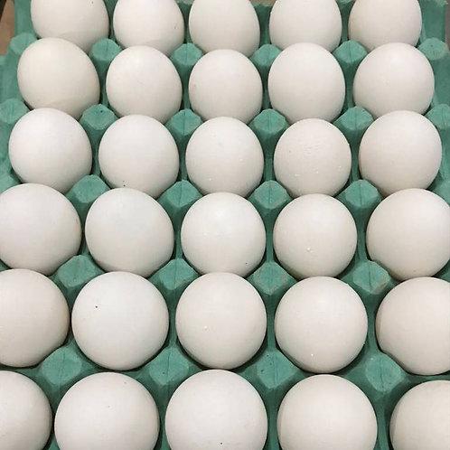 Bandeja 30 ovos (JUMBO)