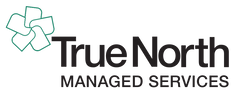 True North Managed Services Master Logo.