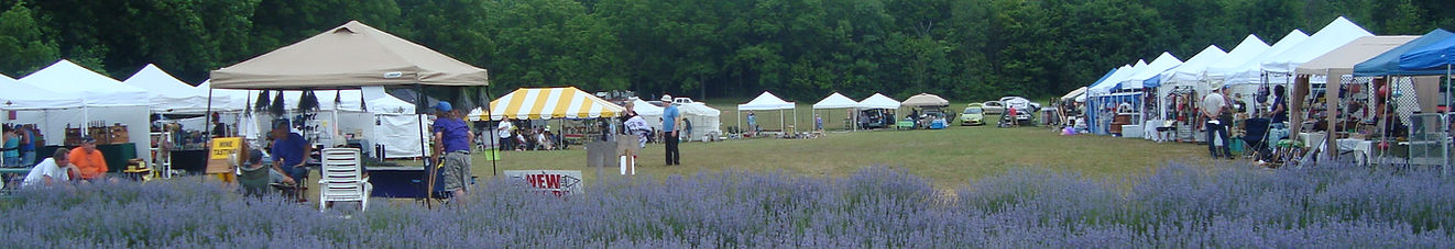 2019 NY Lavender Festival - Red Creek, NY - Fairs and