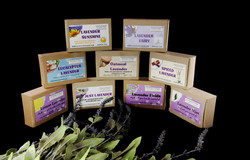Handcrafted lavender soaps & lotions