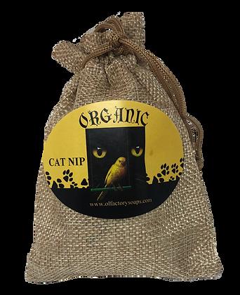 Organic Cat Nip