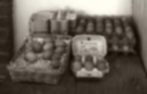 tancred-farm-shop-5.jpg