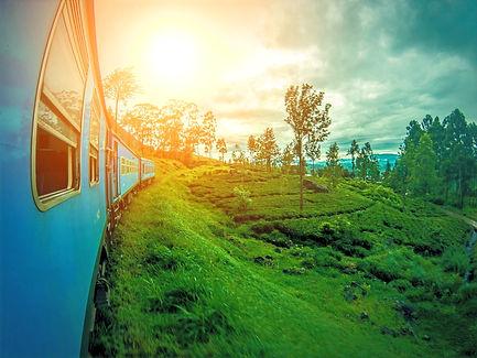 srilanka-2792097_1920_edited.jpg