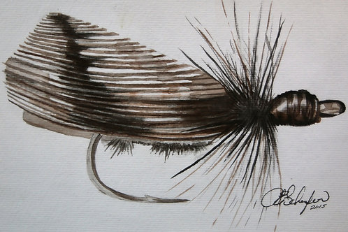 Goddard Caddis (Framed)