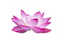 new lotus with out background.png