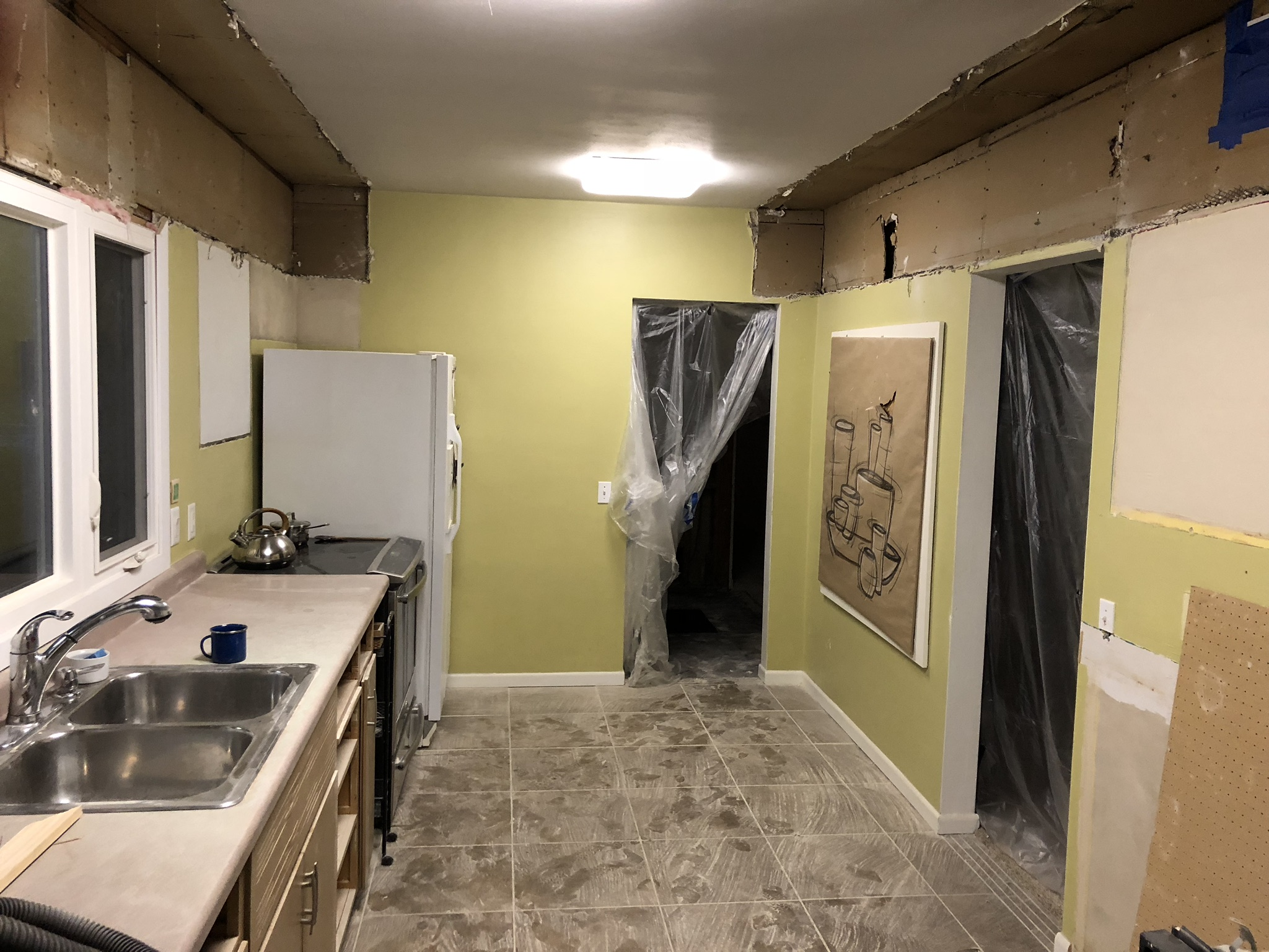 progress kitchen demo (4)