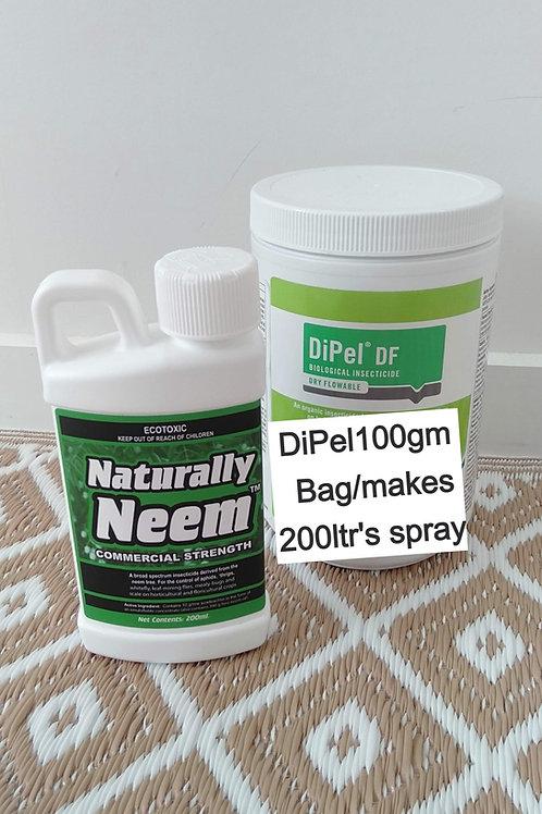 Organic Caterpillar Control & Naturally Neem Insecticide