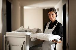 Maid-At-Work.jpg