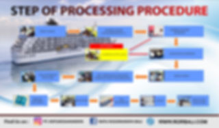 step of precessing procedurs NEW.jpg
