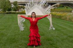 Flamenco Joy