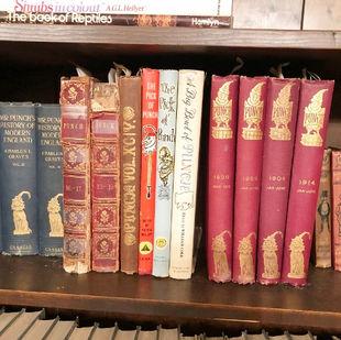 books (45)