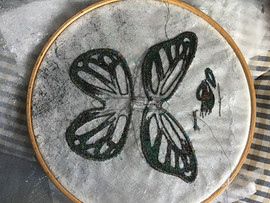 Butterfly in creation