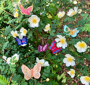 Butterfly brooches enjoying the sunshine