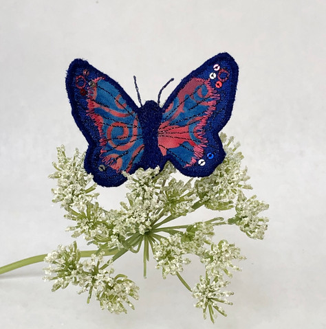 Blue and red butterfly