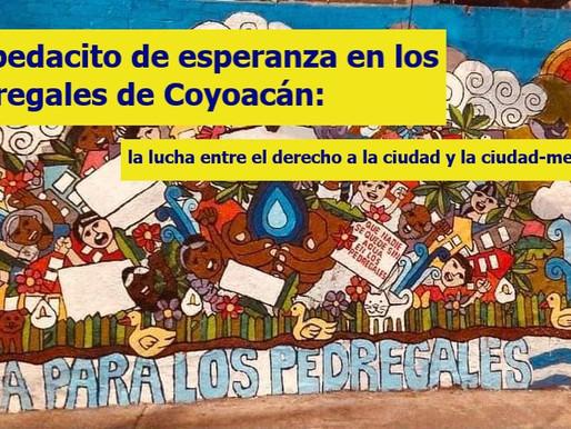 Un pedacito de esperanza en los pedregales de Coyoacán