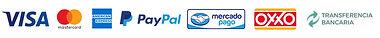 Cintillo-Logos-Pagos.jpg