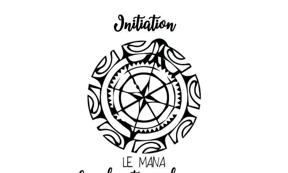 Initiation au Mana