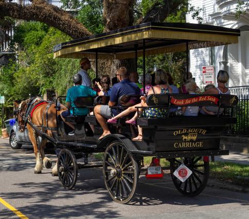 Carriage Tours-1.jpg