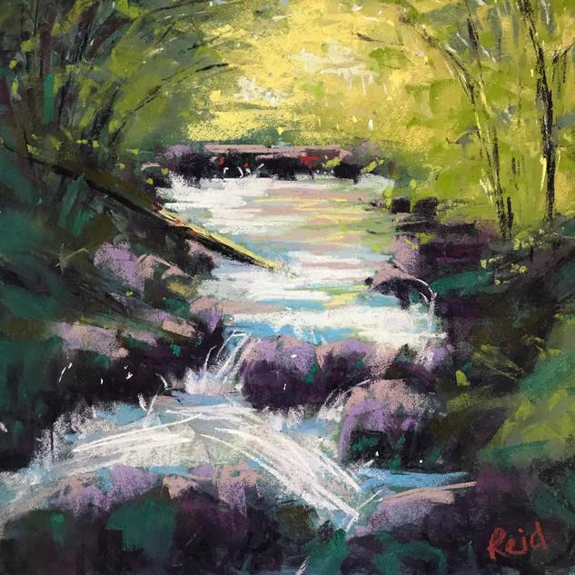 CR Mountain Creek.jpeg