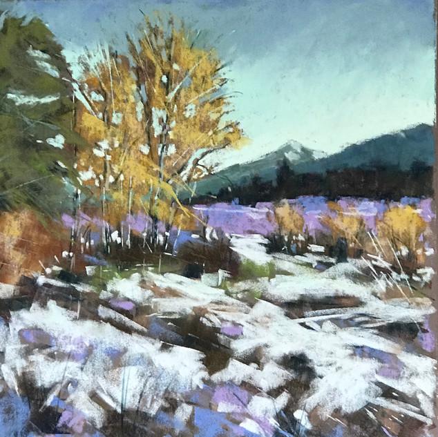 Caroline Reid Threadbo winter