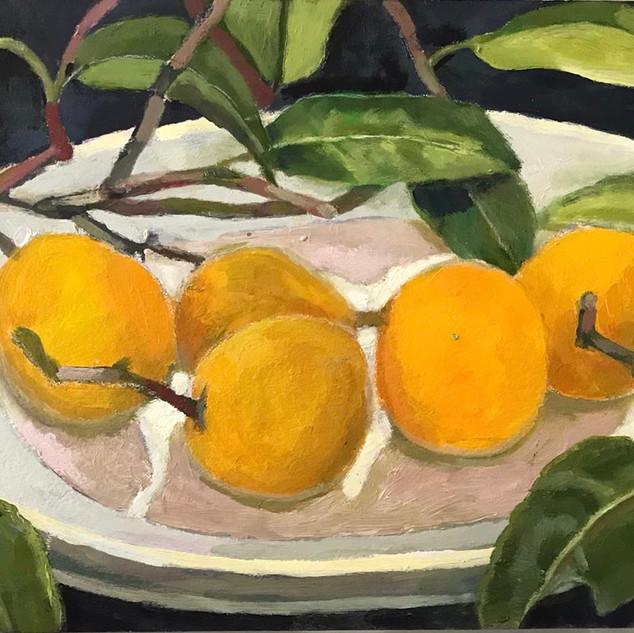 robin howard five seville oranges