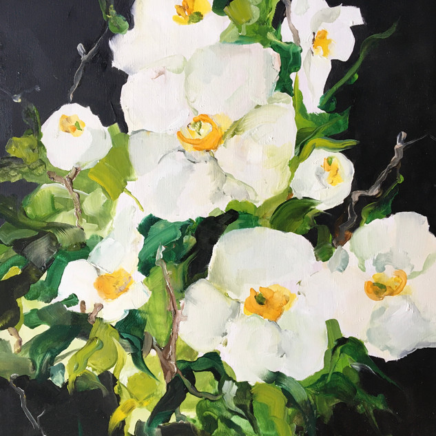 Profusion Of Blooms 49cm X 59cms Framed