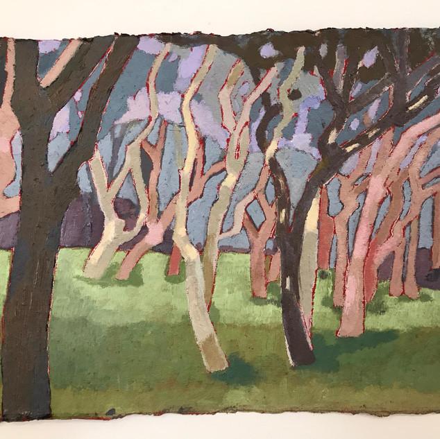 Robin Howard, wasp head trees