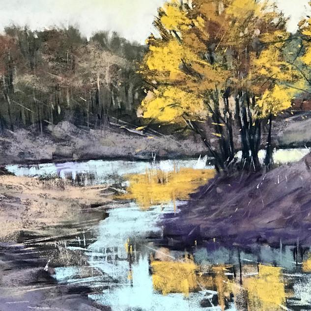 Caroline Reid Early wattle at the lake