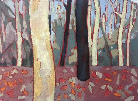 Australian bushlands. A curated exhibition of paintings and prints