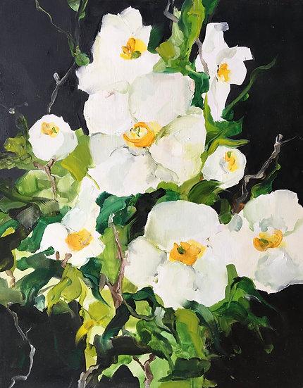 Matilda Dumas, Profusion of Blooms