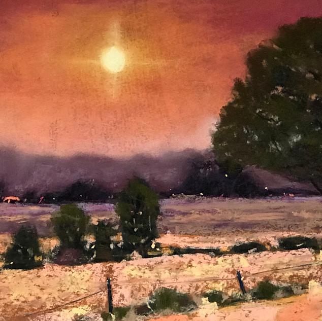 Caroline Reid Smokey twilight