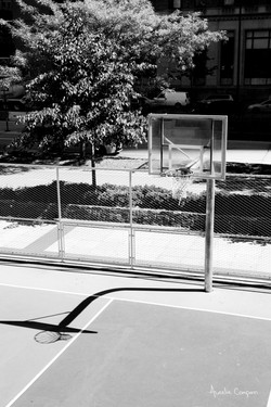 Harlem, Basket shades