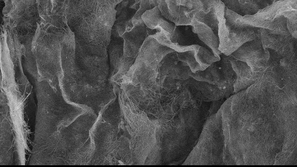 MnO2 nanofiber