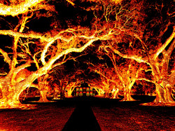 Oak Alley heisse Nacht