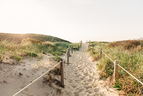 Dionis Beach Path