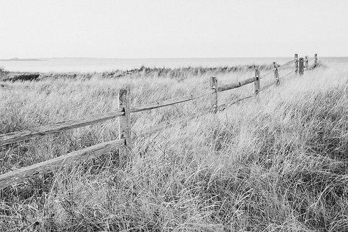 Madaket Harbor Fence