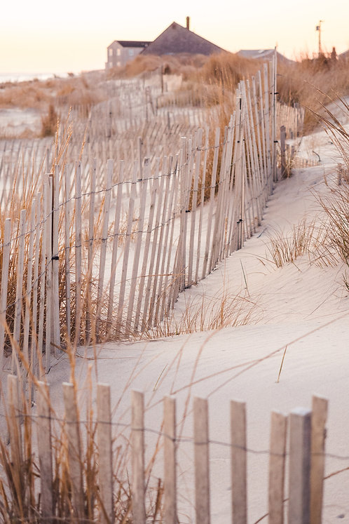 Madaket Beach Fence