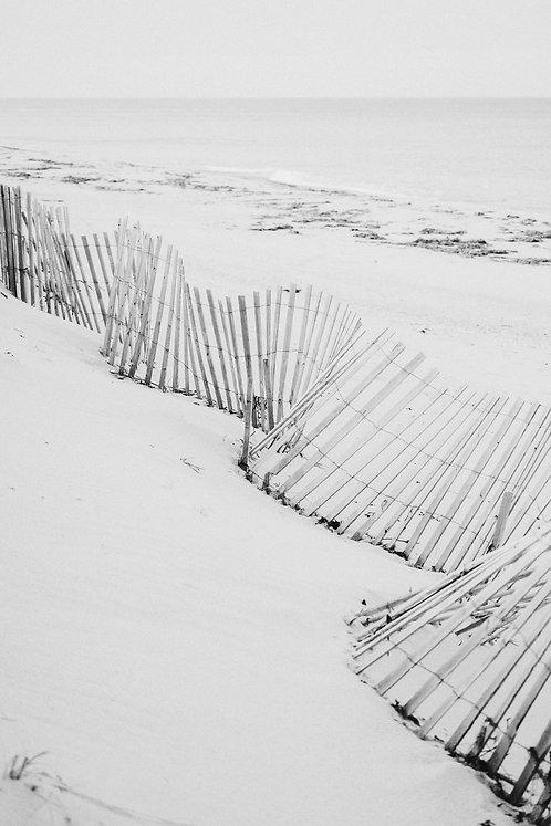 Quidnet Fence