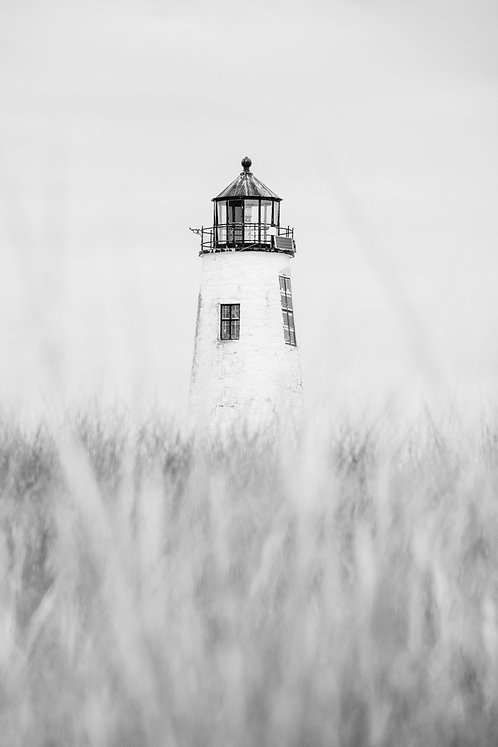 Great Point Lighthouse in the Dunes BW