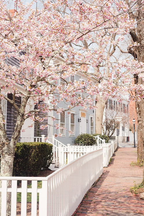 Spring on Main Street