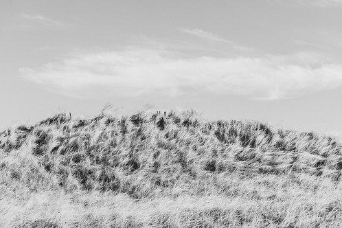 Windy Dunes 2