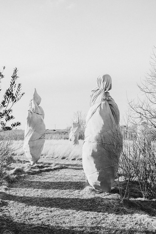 Ghosts of Nantucket