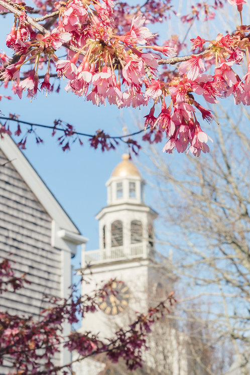 Unitarian Church in Spring