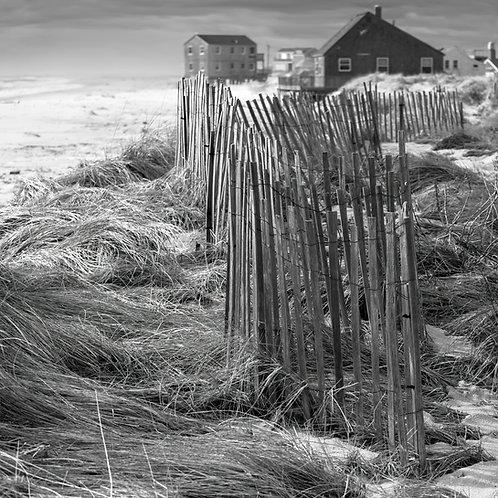Madaket Beach Fence BW