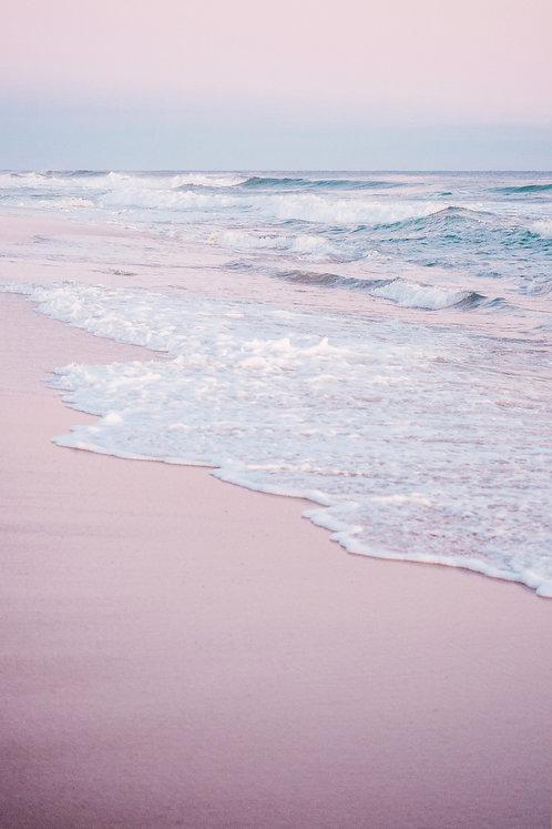 Pink Cisco Sunset